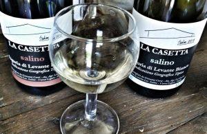 Salino wijngaard